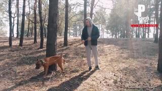 Собака-по команде ССАКА)) 16+ [Рыбачёв и Пёс НЕИЗДАННОЕ]