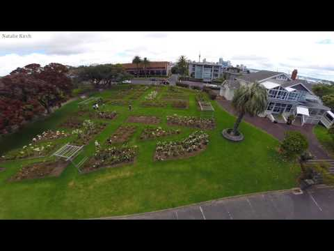 Auckland from above - Parnell Rose Gardens