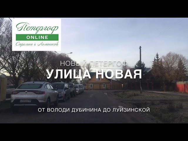 Улица Новая, Новый Петергоф