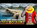 BUAYA GODZILLA MEMAKAN SEMUA MAHLUK LAUTAN - FEED AND GROW FISH INDONESIA #18