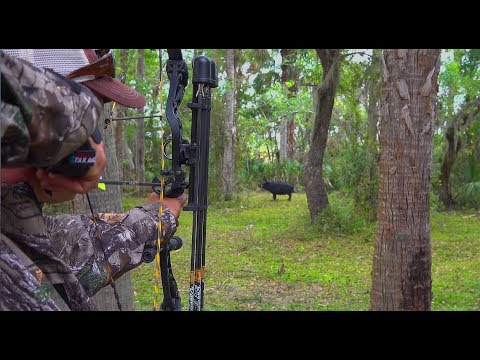 Wild Boar Archery Spot n' stalk {Catch Clean Cook} Tasty Tuesday!
