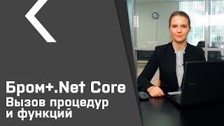 Бром-клиент для .Net Core (урок №2). Вызов процедур и функций