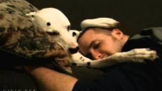 【キュンキュンする犬動画】 これはたまらん♡かわいい犬の仕草GIF動画 イヌ好きのためのGIF動画まとめ thumbnail