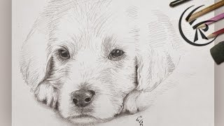 "Drawing ""cute Dog"" ►► Timelapse"