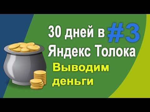 #3 - Заработок в Яндекс Толока за 30 дней без вложений|Выводим заработанные деньги