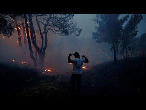 Yunanistan yanıyor: Orman yangınları en az 20 can aldı