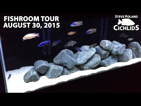 Fishroom Tour August 30, 2015
