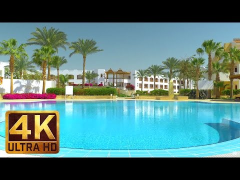 Under The Palms - 4K Ultra HD Egypt Relax Video - 2 HRS for sleep, destress, relaxation