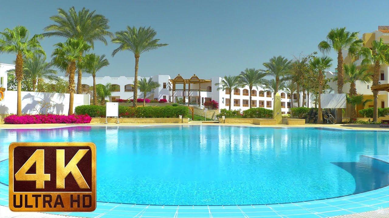 Under The Palms - 4K Ultra HD Egypt Relax Video - 2 HRS for sleep, destress, relaxation