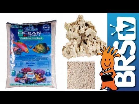 Water, Rock & Sand - EP 4: Saltwater Aquarium Basics