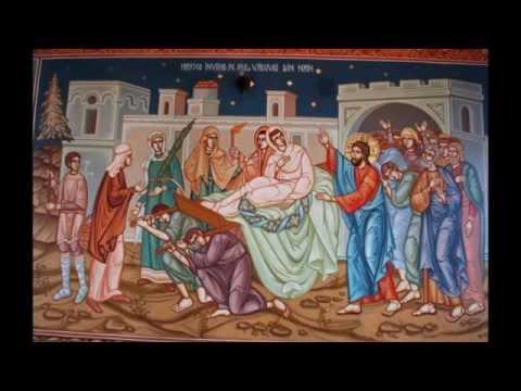 ÎPS Bartoloma Anania - Predică la Duminica a 20 a după Rusalii   Învierea fiului văduvei din Nain