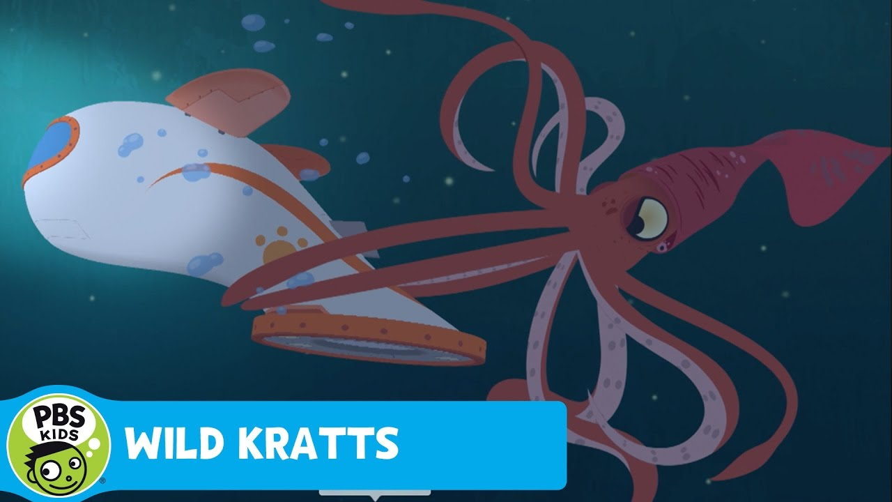 It's true squids suck