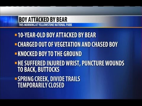 10 year-old boy attacked by bear in Yellowstone Park