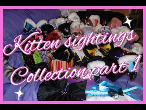 Kitten Sightings Collection (part 1)