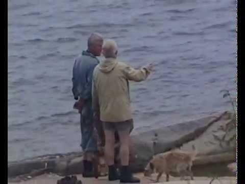 Чудовище Ладожского озера.