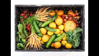Quelle différence entre végétarien et végétalien ?