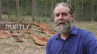 Australia: World's biggest dinosaur footprint discovered on Dampier Peninsula
