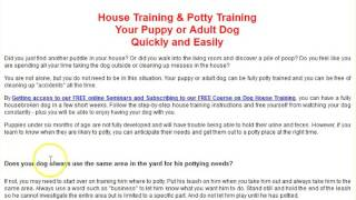 ***Potty Training Tips For Puppies-FREE Mini-Course***