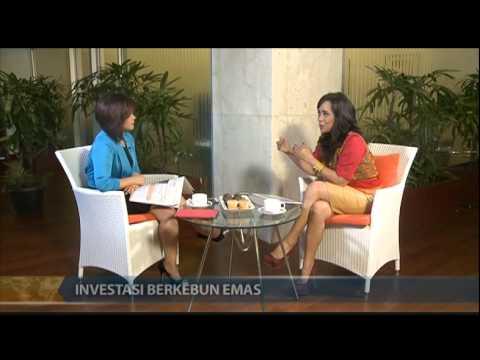 YOUR MONEY 811 SHOW LISA SOEMARTO  INVESTASI BERKEBUN EMAS
