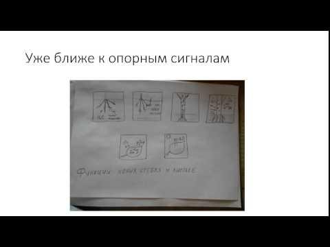Обучение детей, методика Шаталова, опорные сигналы