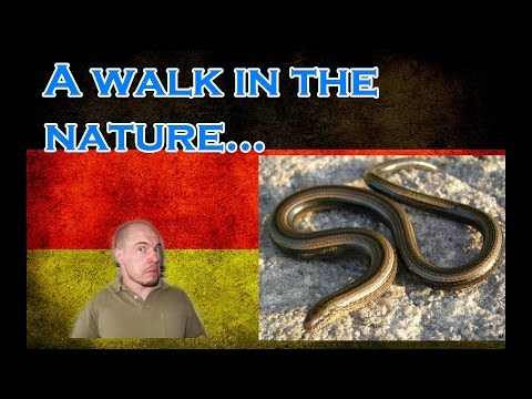 Germany, how it is: A walk in the nature - Snake inside...