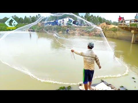 Net Fishing - Fishing Everyday Around Lake for Food