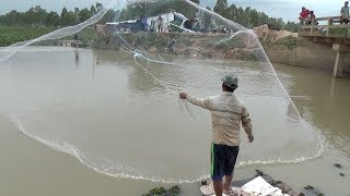 Net Fishing - Fishing Everyday Around Lake for Food