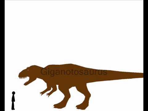 Pivot - Dinosaur size comparison