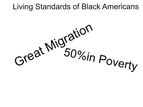 Living Standards of Black Americans