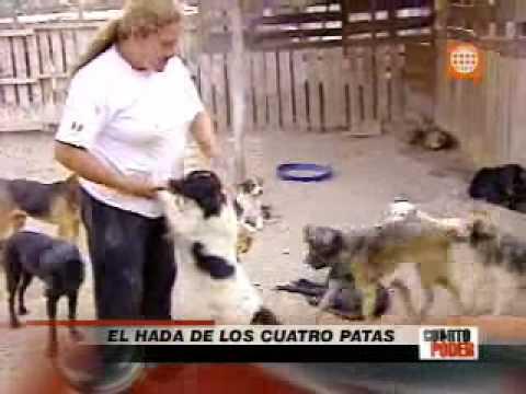 Cuarto youtube for Cuarto poder america tv