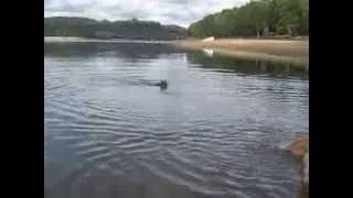 Baignade Lac de la Valette Elliot M