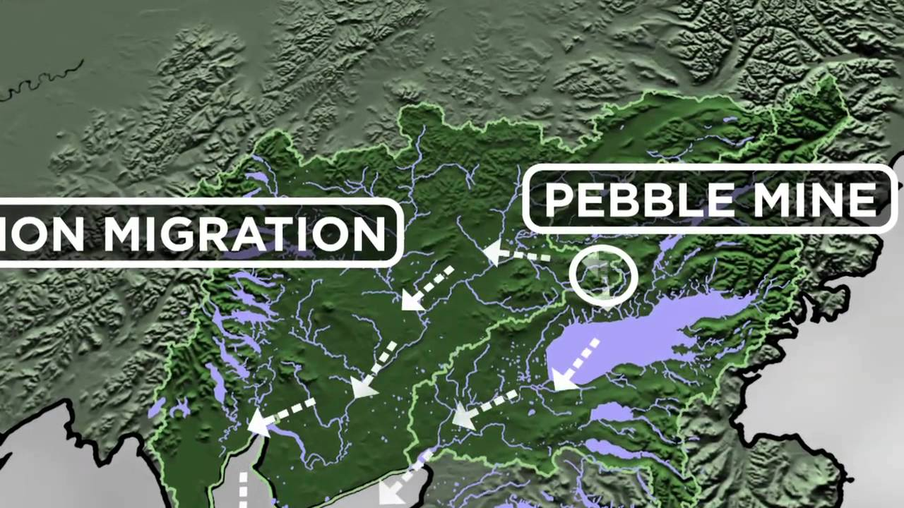 the pebble mine Save bristol bay is an effort to protect bristol bay from the pebble mine and future  mining proposals that threaten this pristine wilderness.