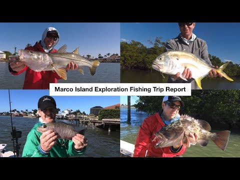 The Scientific Method For Catching Inshore Saltwater Fish In The Winter [New Case Study Example]