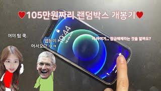 존버단들 모여라! 아이폰 12 미니 용달블루 128GB…