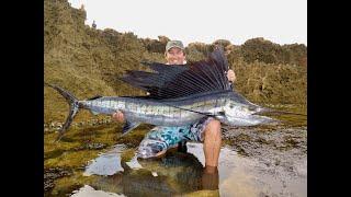 Sailfish off the Rocks - LBG Fishing