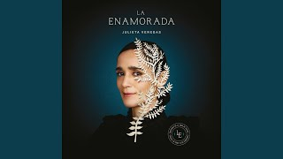 Watch Julieta Venegas Aire En Movimiento video
