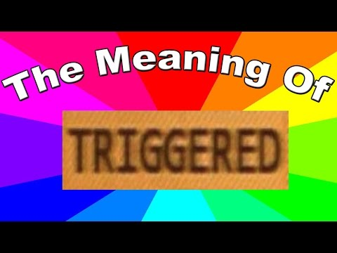 What is a triggered meme? The meaning and definition of triggered memes