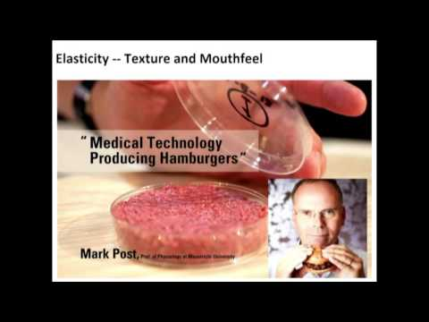 Mark Post: Medical Technology Producing Hamburgers; Science & Cooking Public Lecture Series 2016