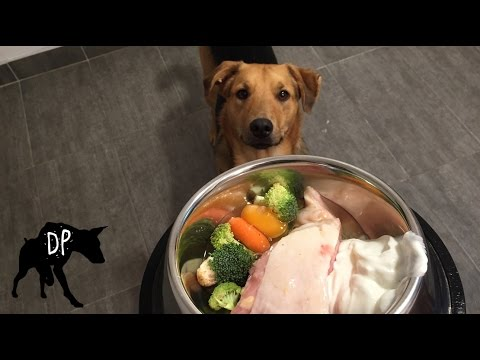 Yogurt, Chicken thigh and Veggies | Raw Feeding Dogs