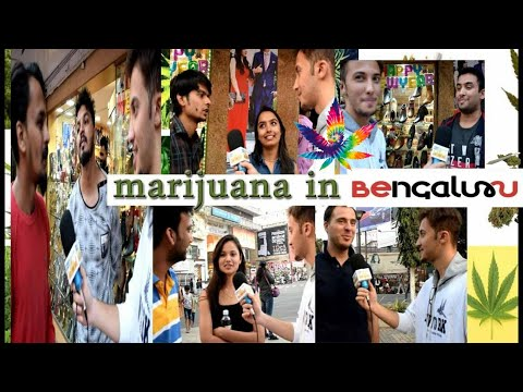 Bangalore Shocking Reaction ON MARIJUANA | Should Weed Be Legal In India | Bangalore Media-Mc Taiwer