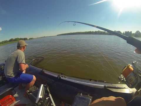 рыбалка жереха в астрахани на видео