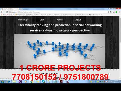 User Vitality Ranking and Prediction in Social Networking Service a Dynamic Network Perspective