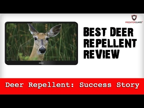 Best Deer Repellent Review - Predator Guard Deterrent Lights Success Story
