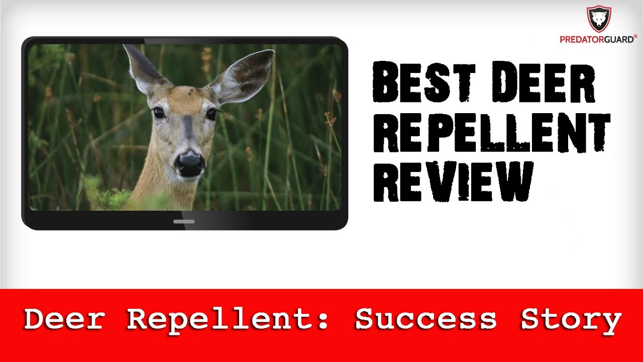 Best Deer Repellent Review Predator Guard Deter Lights Success Story