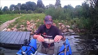 Pike fishing Line Thru Roachs