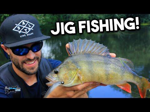 Lure Fishing for Beginners - Perch on Jigs | TAFishing
