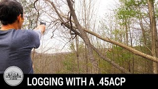 Off Grid Home Build (#3): Clearing Land Without Heavy Equipment