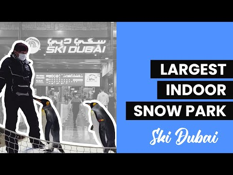INDOOR SNOW PARK | SKI DUBAI | DUBAI IN 2021 (VALENTINE'S DAY CELEBRATION)