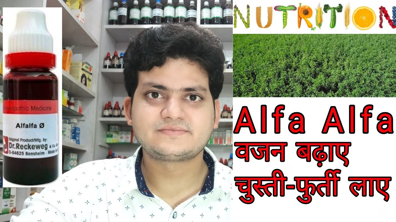 Alfalfa ! Homeopathic medicine Alfalfa ? action symptoms & uses ! for  weight and energy !