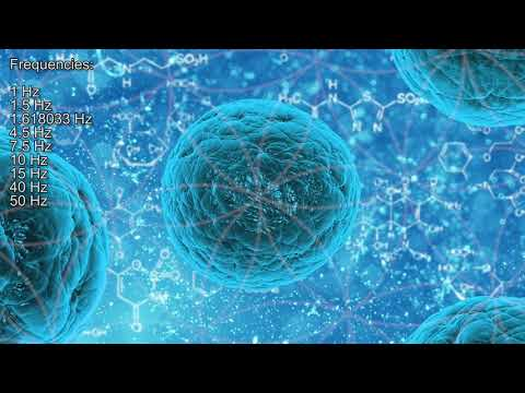 Stem Cell Production Meditation - 2 - Music Therapy - Experimental Meditation